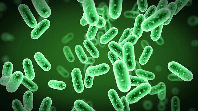 Normalde beraberce barış içerisinde yaşadığımız bakterilerle kimi zaman anlaşmazlık yaşarız.