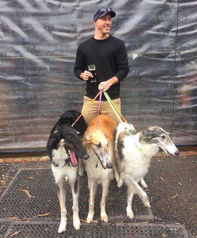 Anderson'ın kurtarılmış köpeklere olan sevgisi, tanışabildiği kadar köpekle tanışma projesiyle başlamış. Daha çok köpek tanıdıkça insanları kurtarılmış köpekler hakkında bilgilendirmeye ve bu köpeklere yardım eli uzatmaya başlamış.