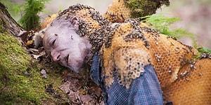 Arılar Tarafından, İnsan Silüetinde İnşa Edilmiş Belki de En Ürkütücü Kovan Bulundu!