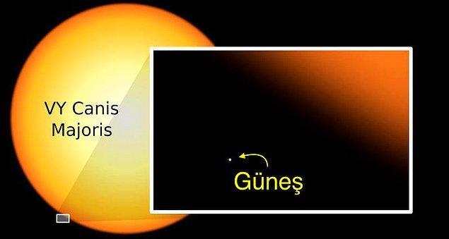 6. VY Canis Majoris o kadar büyük ki, onu Güneş'in yerine koysaydık, Jüpiter'in yörüngesini bile doldururdu.