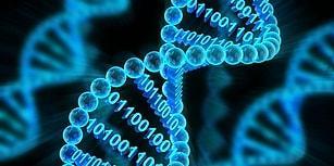 Evrendeki Her Canlının Hammaddesi DNA Hakkında Sizi Şaşırtacak 19 Enteresan Bilgi