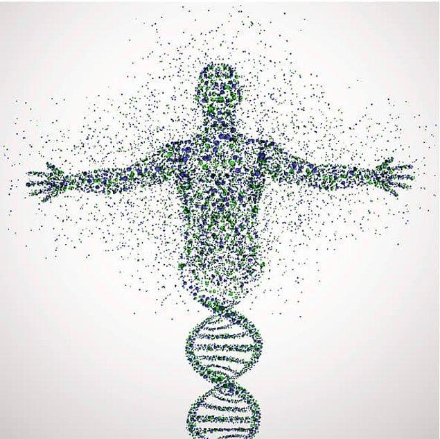 1. Vücudunuzda şu an bulunan atomlar, bir yıl önce vücudunda bulunan atomlardan tamamen farklı.
