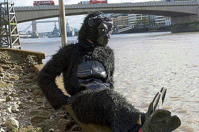 Gorillerin neslinin tükenmemesi için kurulan kuruluşa en fazla yardım yapan oymuş.