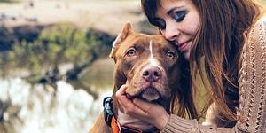 Yalnızca Köpek Sahibi Olanların Anlayabileceği 12 Şey
