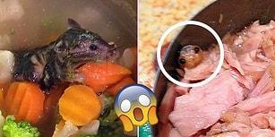 Yediğimiz Şeylerden Çıkanları Görünce İştahınızı Birkaç Günlüğüne Kaçıracak 23 Görüntü