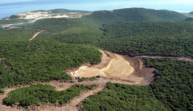 2010 yılında 'Özel koruma alanı' ilan edilmişti