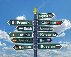 1) İyi Derecede Yabancı Dile Sahip Olmaları