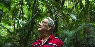 Dikili Ormanı Var: Brezilya'da Tek Başına Yağmur Ormanı Oluşturan Antonio Vicente ile Tanışın!