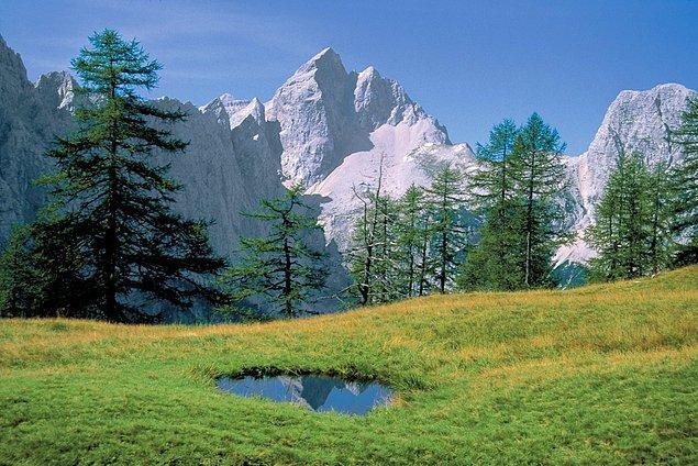 Triglav Ulusal Park'ı da Bled bölgesinde gidebileceğiz yerlerden biri.