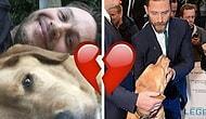 Köpeği Woody'nin Ölümü Üzerine Duygularını En Saf Haliyle Belirten Tom Hardy'nin Mektubu