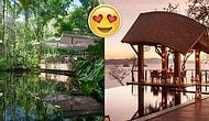 Doğaya Aşık Olanlar İçin Dünyanın Her Yerinden Oylanarak Seçilmiş En İyi 10 Ağaç Ev Oteli