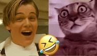 İki Farklı Sahnenin Kombiniyle Uzay-Zamanda Bambaşka Boyutlar Açmış 19 Komik Görüntü