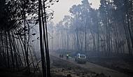 Portekiz Orman Yangınına Teslim: 62 Kişi Hayatını Kaybetti