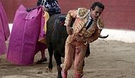 Etme Bulma Dünyası! Dünyaca Ünlü Matador Bir Boğa Güreşinde Hayatını Kaybetti