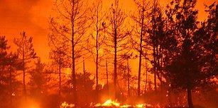 Datça'da Nedeni Belirlenemeyen Orman Yangını: 'Bir Ay Arayla İki Yangın Manidar'