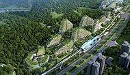 İnsanoğlu Tabiattan Aldığını Geri Veriyor: Çin'den 40 Bin Ağacın Yeşereceği 'Orman Kent' Projesi