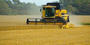 Buğdayda Gümrük Vergilerinin Düşürülmesinin Ardından Trakya'dan Gelen Tepki: 'Bizi Çok Zor Günler Bekliyor'