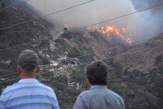 İzmir'in Menderes ilçesinde cumartesi günü makilikte başladıktan sonra rüzgarın etkisiyle ormanlık alana yayılan yangında 800 hektarlık alan kül oldu.