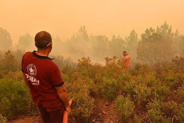 Mersin'in Anamur İlçesi'nde gelen son bilgilere göre hala devam eden orman yangınında 200 hektar kızılçam ormanı zarar gördü...