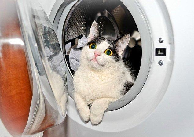 4. Çamaşır makinesinden çamaşırları çıkardıktan sonra elinle son bir kez makinenin içinde çorap kalmış mı diye kontrol eder misin?