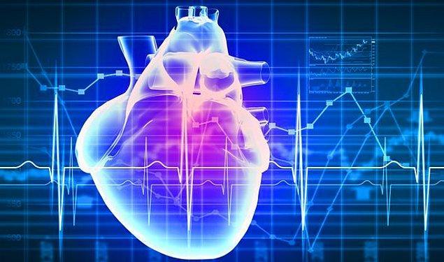 2. Kan basıncını ve kan şekeri seviyesini dengeleyerek kalp sağlığında önemli rol oynar.