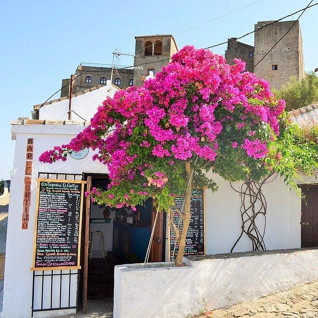 12. Güney İspanya'da zamanı yavaşlatan bir tatil.