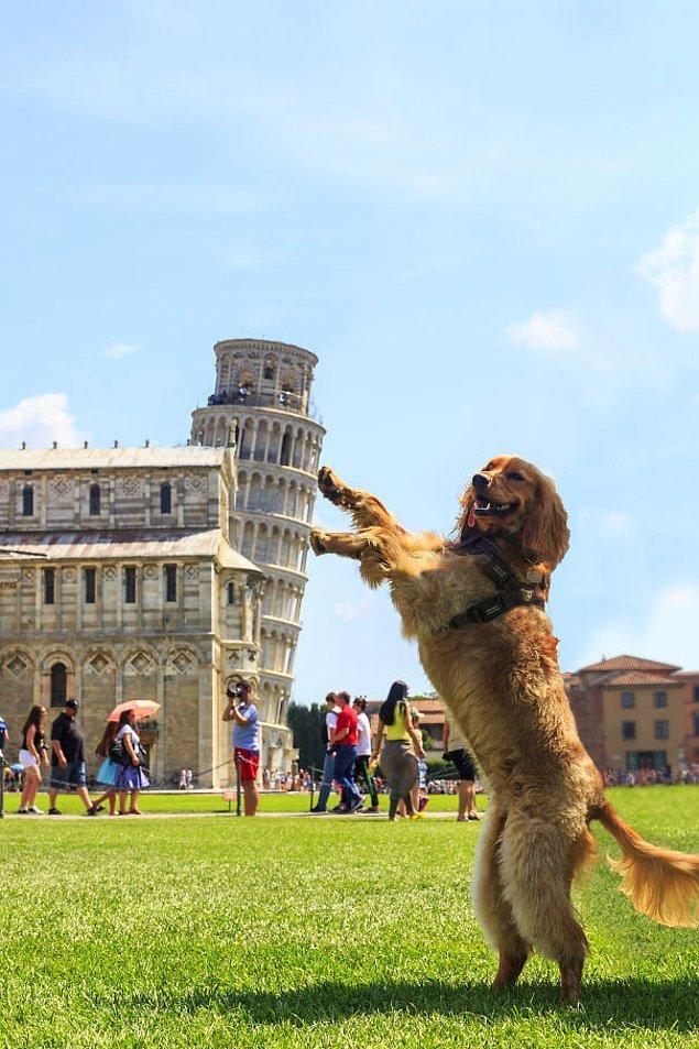 2. Alışılanın dışındaki eğikliği de Pisa Kulesi'ni epey özgün kılıyor.