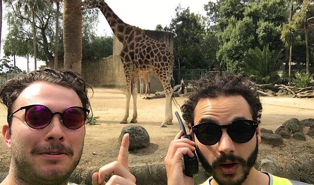 Bu başarının üzerine yerel hayvanat bahçesinde de şanslarını deneyen kankalar bu kez işin içinde bir de telsiz katınca...