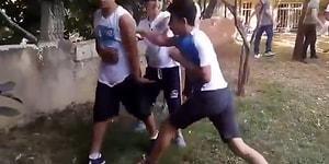 Müthiş Bir Kaosun İçinde Amerikan Güreşi Tarzı Kavga Eden Çocuklar