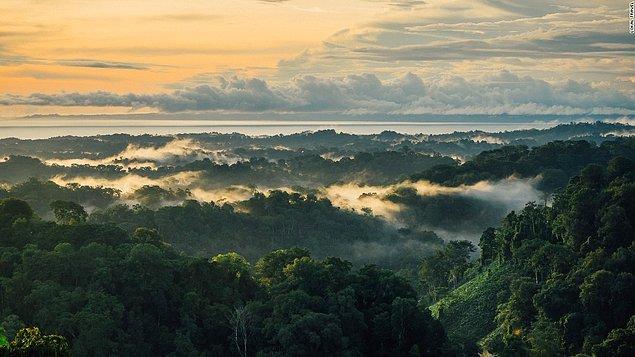 8. Osa Yarımadası, Kosta Rika