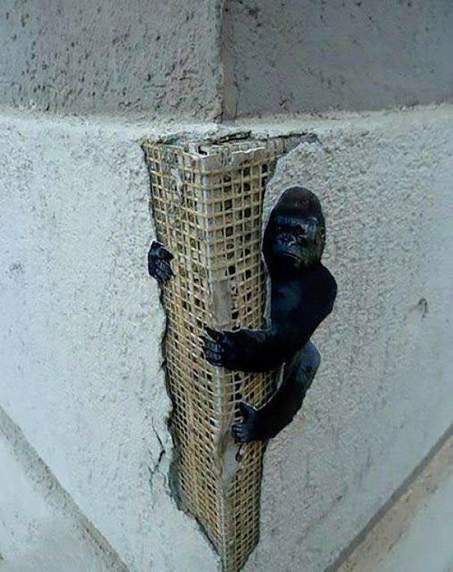 3. Kong'un küçük versiyonu.