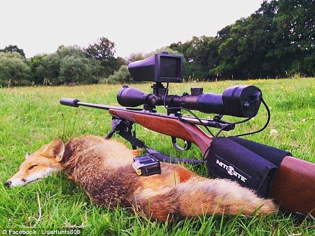 Bir fotoğrafında avladığı domuzla beraberken diğerlerinde geyikler ve tilkiler görülebiliyor.