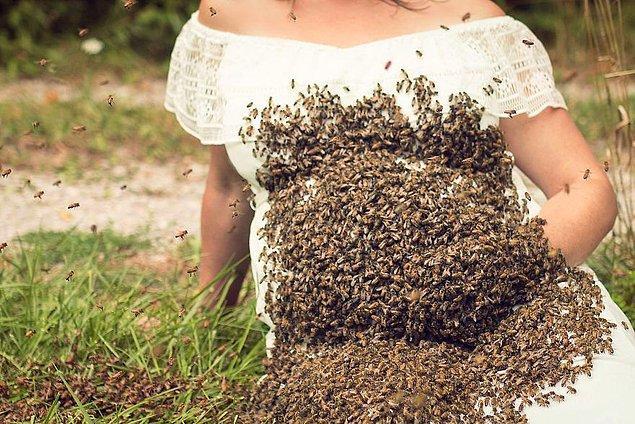 Şirketin işlerinden biri de koloni halindeki arıları yeniden bir yere yerleştirmek ve istenmeyen yerlerde bulunanları da kovanına geri götürmek...