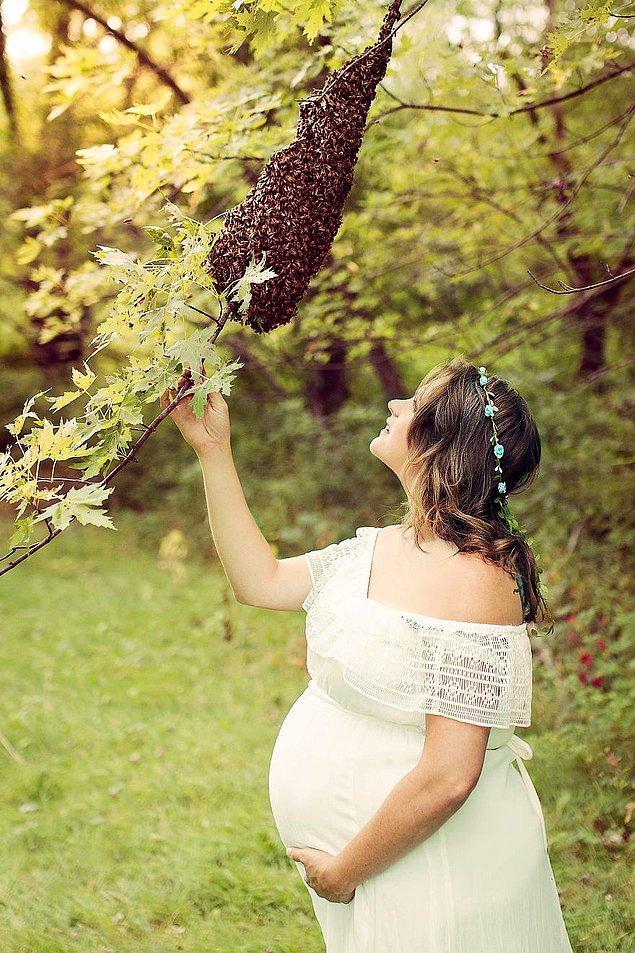 Emily'nin fotoğraflarda kullandığı arılar da, bu arılardı.