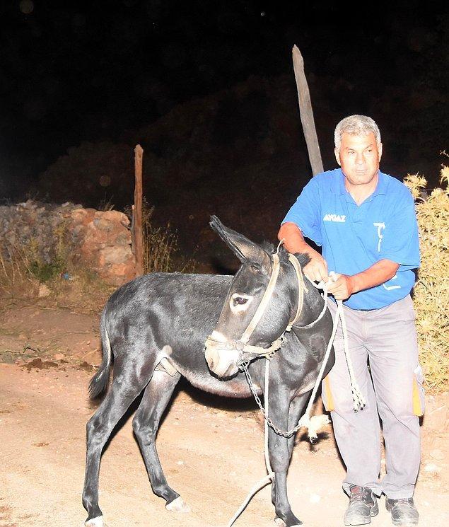 Köyü terk etmek istemeyen ve hayvanlarını kurtarmaya çalışan bazı vatandaşlar ise jandarma ekipleri tarafından bölgeden çıkarıldı.