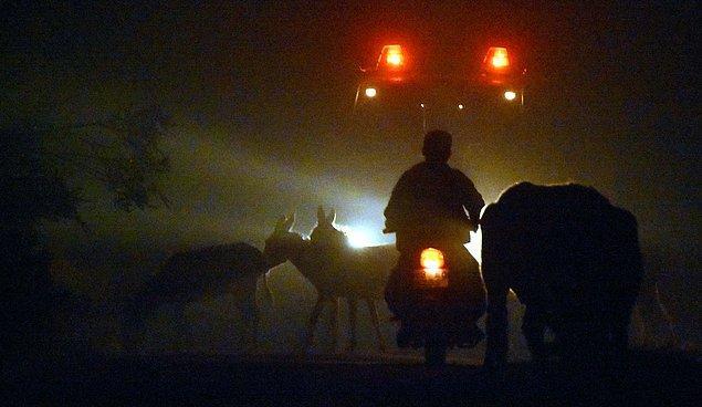 Bazıları hayvanlarının canını kurtarırken bazıları da alevlerin evlerine yaklaşması üzerine giyeceklerini alarak köyü terk etti.