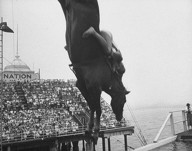 4. 1970'lerde atlı dalış popülerliğini giderek kaybetmeye başlamıştı. Özellikle hayvan hakları aktivistleri bu 'eğlencenin' bir an önce durdurulmasını talep etmişti.