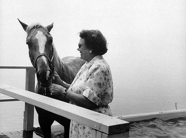 7. Başarılı atlayışından sonra ödülünü alan atın bu fotoğrafı 1953 yılında çekildi.