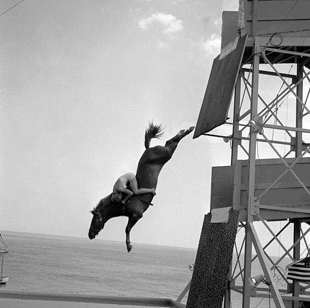 22. Atlı dalışta canı pahasına atına tutunan bir binici, 1955.