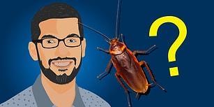 Google'ın Hintli CEO'su Sundar Pichai'den Stresten Kurtulmanın Reçetesi: Hamam Böceği Teorisi