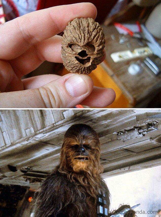 4. Vefalı ve delikanlı Chewbacca...