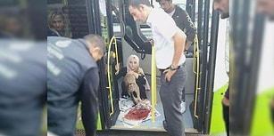 Çarptığı Köpeği, İtirazlara Rağmen Otobüse Alıp Tedavisi İçin Yetkililere Teslim Eden Şoför