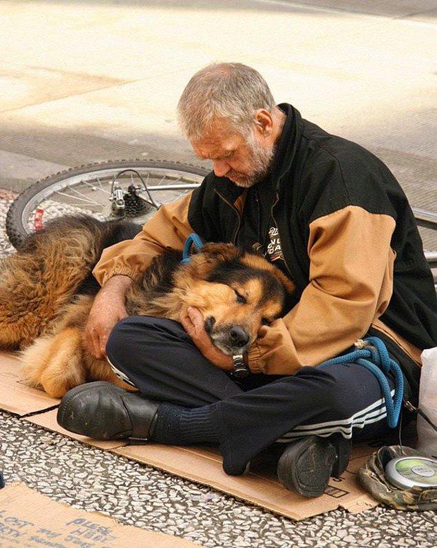 4. Sizi herkes terk edebilir, ancak aranızda bağ kurduğunuz bir hayvan asla!