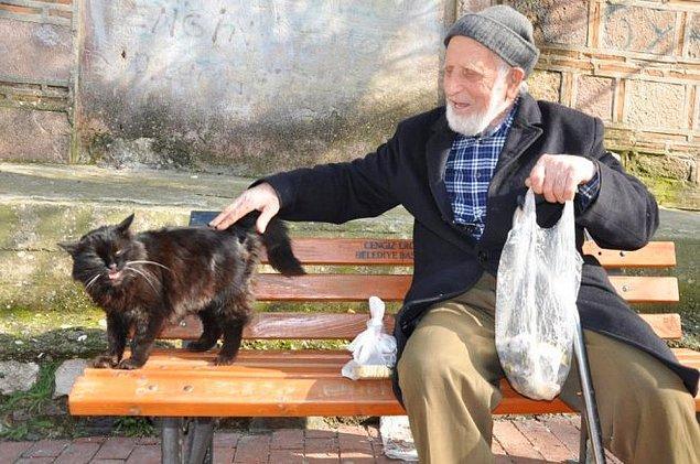 9. Hayat sizden birçok şeyi aldığında, hayvanlar yeniden umut olabilir.