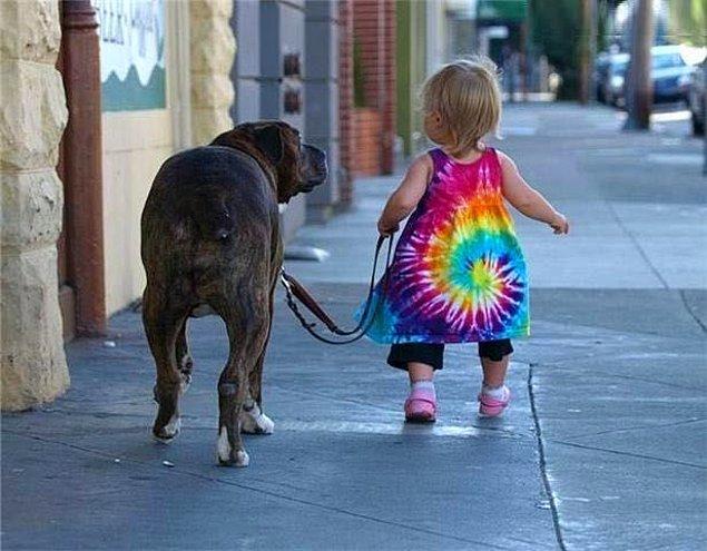 14. Dakik ve düzenli olmayı öğrenirsiniz. Eğer bir köpeğe sahipseniz, buna mecbursunuz demektir.