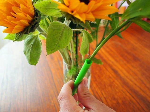 2. Sert pipetlerle zayıf gövdeli çiçekleri destekleyerek çiçekleri düzeltin.