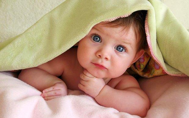 Minik Bebekler