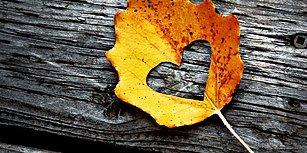 Bu Sonbahar Hayatının Aşkını Bulma İhtimalini Söylüyoruz!