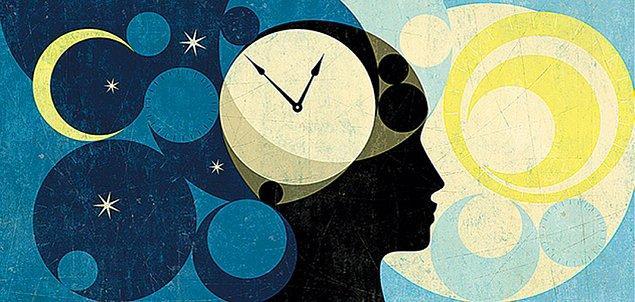 Sirkadiyen ritmini oluşturan diğer protein unsurlarını da bulan bilim insanları, hücre içinde kendi kendine işleyen saatin mekanizmasını gözler önüne serdi.