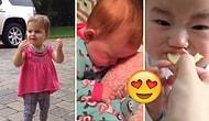 Şapşallıklarıyla İnsanın Tüm Stresini Alıp Götüren Bebekler